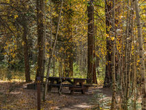 Campground in Autumn Royalty Free Stock Photos