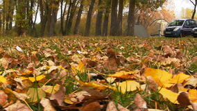 The campground in autumn forest. Slider Shot stock footage