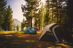 Campground in autumn taiga in Siberia. Tourists camped on the edge in the woods on a background of mountains and lakes. Adventure travel active lifestyle stock photo