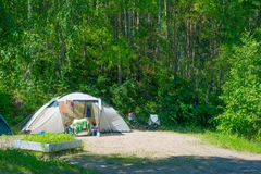 Campground in summer forest Royalty Free Stock Photography