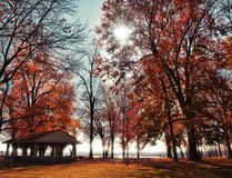 Campgrounds in autumn Royalty Free Stock Image