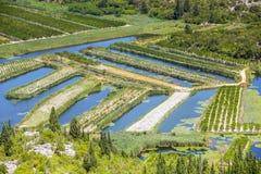 Campi agricoli di Neretva Fotografia Stock Libera da Diritti