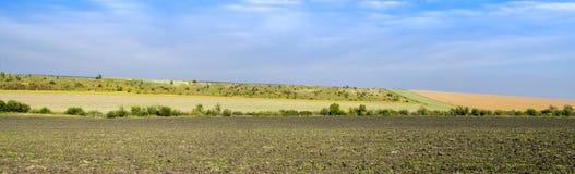 Campi agricoli panoramici dell'Ucraina Fotografia Stock