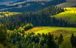 Campi agricoli sull'colline boscose Immagini Stock Libere da Diritti
