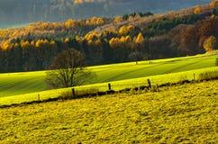 Campi in autunno, Germania di agricoltura Fotografia Stock Libera da Diritti