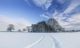 Campi britannici della campagna in neve all'inverno fotografia stock