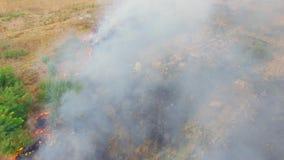 Campi brucianti in fumo pesante archivi video