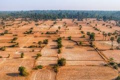 Campi cambogiani da sopra immagini stock libere da diritti
