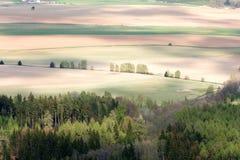 Campi colorati dell'azienda agricola Fotografie Stock