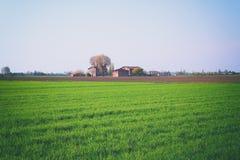 Campi coltivare con la casa dell'agricoltore Immagine Stock