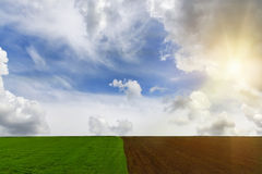 Campi coltivati per la semina ed i campi verdi Fotografie Stock