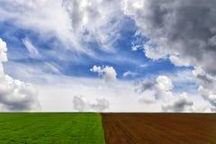 Campi coltivati per la semina ed i campi verdi Fotografia Stock Libera da Diritti