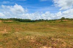 campi con cielo blu, nuvole Fotografia Stock Libera da Diritti