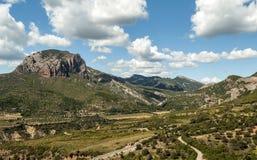 Campi con la montagna Fotografie Stock