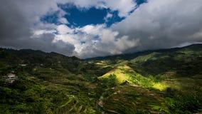Campi dei terrazzi del riso in montagne della provincia di Ifugao Banaue, Filippine archivi video