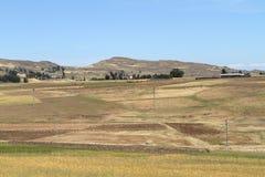 Campi del raccolto e di agricoltura in Etiopia Fotografia Stock Libera da Diritti