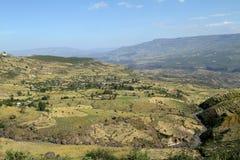 Campi del raccolto e di agricoltura in Etiopia Immagine Stock