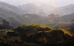 Campi del terrazzo di Longji in Guiling Fotografie Stock Libere da Diritti