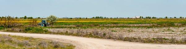 Campi dell'agricoltore, paesaggio rurale Immagine Stock