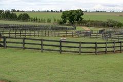 Campi dell'azienda agricola Immagine Stock Libera da Diritti
