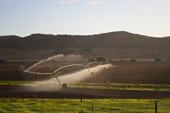 Campi dell'azienda agricola che sono irrigati o innaffiati Fotografia Stock Libera da Diritti