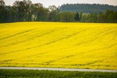 Campi della Baviera Immagini Stock Libere da Diritti