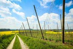 Campi della Baviera Fotografia Stock Libera da Diritti