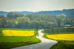 Campi della Baviera Fotografia Stock