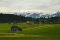 Campi della Baviera, Germania Immagini Stock