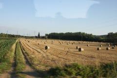 Campi della Borgogna Immagine Stock Libera da Diritti