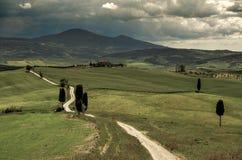 Campi della Toscana con Cyprysses Immagine Stock Libera da Diritti