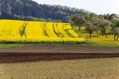 campi della violenza ed acro acricultural Fotografia Stock Libera da Diritti