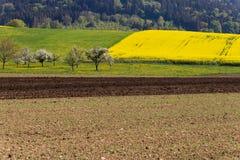 campi della violenza ed acro acricultural Immagine Stock Libera da Diritti