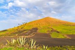 Campi di agricoltura nel paesaggio vulcanico della montagna Fotografia Stock Libera da Diritti
