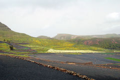 Campi di azienda agricola sulle montagne con le pareti della roccia Immagini Stock Libere da Diritti
