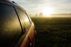 Campi di erba con nebbia in sole di mattina di estate Immagini Stock Libere da Diritti