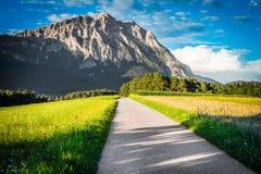 Campi di Fietch su Sonnenplateau, Austria Fotografia Stock Libera da Diritti