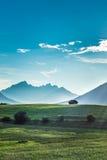 Campi di Fietch su Sonnenplateau, Austria Immagine Stock Libera da Diritti