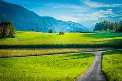 Campi di Fietch su Sonnenplateau, Austria Fotografie Stock