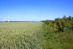 Campi di frumento con le turbine di vento Immagine Stock Libera da Diritti