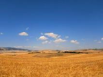 Campi di grano在托斯卡纳 库存图片