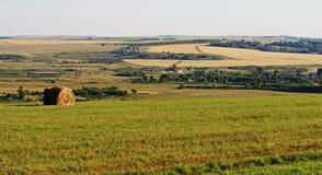 Campi di grano e di lavorazione Fotografia Stock