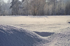 Campi di neve di inverno Fotografia Stock Libera da Diritti