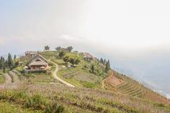 Campi di risaia e della località di soggiorno Fotografie Stock Libere da Diritti