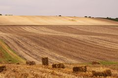 Campi di rotolamento della Moravia, repubblica Ceca Bello paesaggio immagine stock