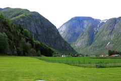 Campi e alte montagne erbosi Fotografie Stock