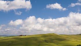 Campi e cielo blu verdi, Toscana, Italia Fotografie Stock