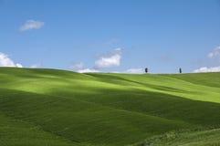 Campi e cielo blu verdi, Toscana, Italia Fotografia Stock