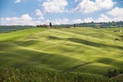 Campi e cielo blu verdi, Toscana, Italia Immagine Stock Libera da Diritti
