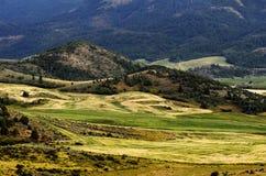 Campi e coltivare in montagne Immagine Stock